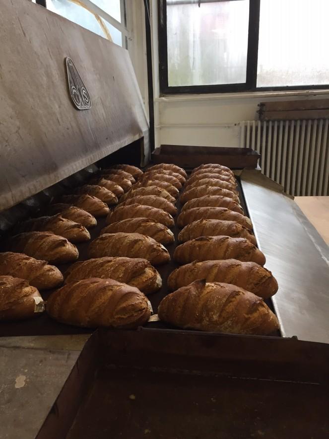 kenyer2